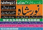 Online Pakistan Astrologer famuse kin noor shah