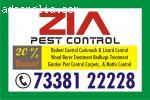 Pest Control Service Flat 40% Discount | 73381 22228 | Cockr