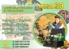 MEGA G3 Multipurpose Device Metal Gold Detector