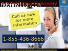 Ring on helpline number for instant help on Hotmail password