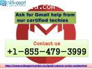 Ask for Gmail help from our certified techies