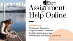Assignment Help Online | Best Assignment Experts