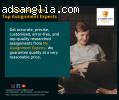 World's Top Assignment Experts   Best Assignment Writing Ex